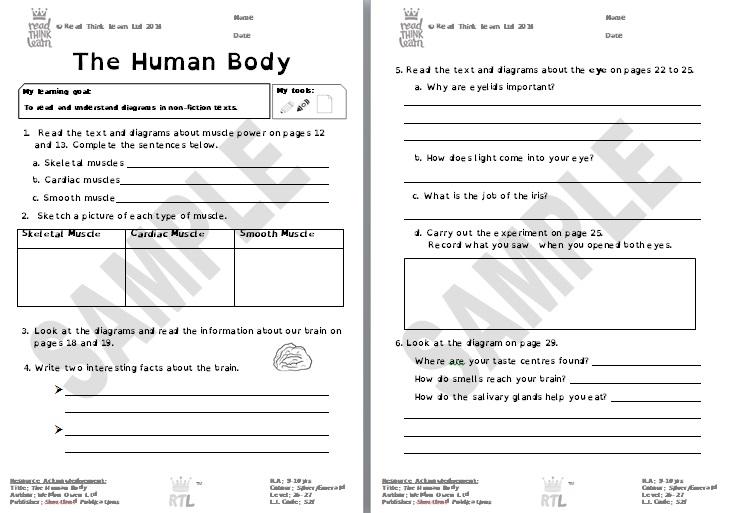 The Human Body 2