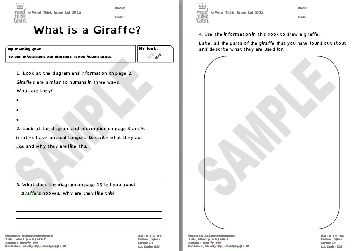 What is a Giraffe